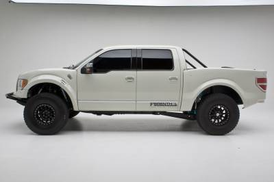 Baja Kits - 2009-2014 Ford F150 2WD Long Travel Back Half 4-Link Race Kit - Rear - Image 11