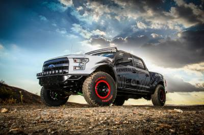 Truck Suspension - Ford 4WD - F-150 15-18